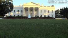 【動画素材】ホワイトハウスとリスの映像