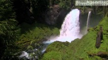 【動画素材】サへリー滝