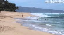 【動画素材】 美しいハワイのビーチ