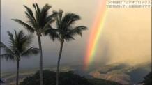 【動画素材】 マウイ島のパームスの虹